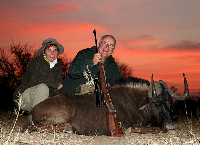 Black Wildebeest Trophy Hunting Makadi Safaris
